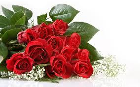 8 Manfaat Bunga Mawar Untuk Kesehatan
